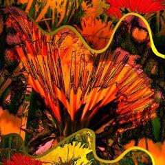 dandelion-fantasia
