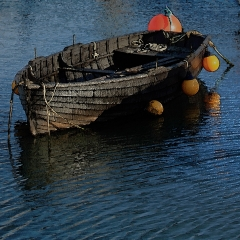 Boat West Bay