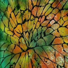 web-autumn