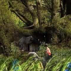 Cockerel in the woods